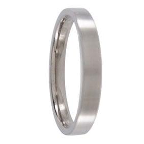 Brushed Titanium Mens Ring